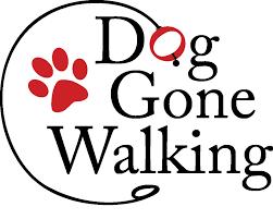 dog gone walking 45 photos u0026 61 reviews pet sitting redwood