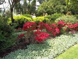 Backyard Slope Landscaping Ideas A Budget Landscaping Ideas For Slopes In Backyard The Garden Best