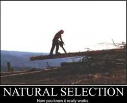memebase natural selection all your memes in our base funny