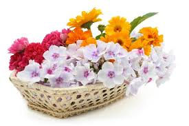 fresh flowers summers fresh flowers in a basket isolated on white stock photo