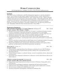 Executive Officer Resume Senior Executive Resume Examples Resume Example And Free Resume
