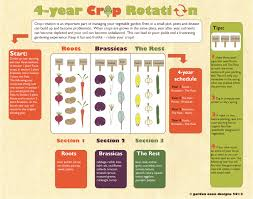 crop rotation garden oasis designs
