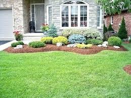 Bushes For Landscaping Shrubs For Landscaping Shrubs For Landscaping Beautiful Ideas On