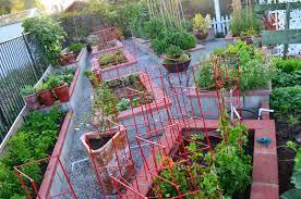 Kitchen Gardening Ideas Your Guide To Starting A Vegetable Garden Start Garden Trends