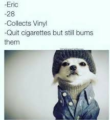 Hipster Dog Meme - hipster dog pinterest hipster dog dog and animal