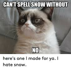 Hate Snow Meme - cantspellsnow without no here s one i made for ya i hate snow