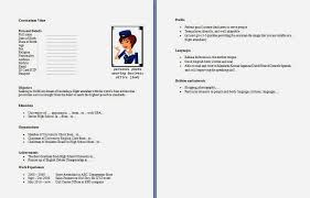 Objective For Flight Attendant Resume Cabin Crew Cv Coinfetti Co