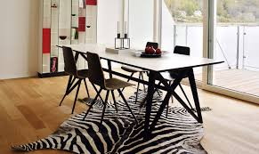 Zebra Dining Chair Dining Room Fetching Picture Of Dining Room Decoration Using