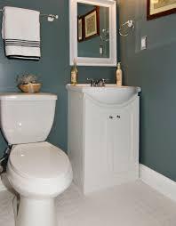 White Vanities Bathroom Fascinating 30 Bathroom Renovations Vanities Inspiration Design