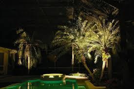 long branch tree lighting estero tree lighting outdoor lighting perspectives naples