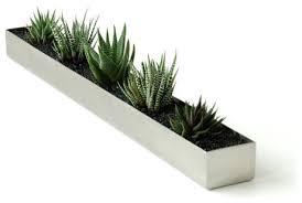 terrarium design stunning modern indoor planter indoor planter