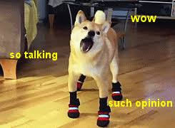 Create Your Own Doge Meme - know your dog memes modern dog magazine