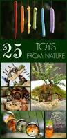 109 best images about homeschooling rocks nature on pinterest