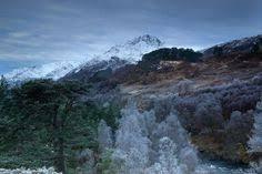 glen affric estate glen affric estate bing images scotland pinterest scotland
