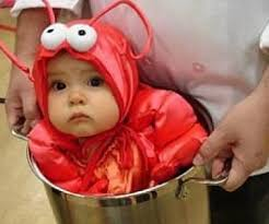 baby costume lobster costume