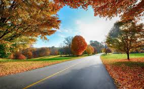 country road autumn desktop wallpapers wallpapers hd wallpapers