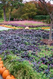 Dallas Arboretum Map by 107 Best All Things Dallas Arboretum Images On Pinterest Dallas
