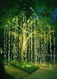 christmas lights to hang on outside tree outdoor hanging lights for trees strikingly ideas hanging lights