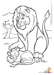 father u0026 son lion 0 00 a pintar niñitas pinterest