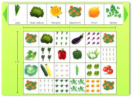 Garden Layouts For Vegetables How To Layout A Vegetable Garden Garden Designs Vegetable