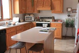 Paint Color Ideas For Kitchen With Oak Cabinets Kitchen Wall Color Ideas With Oak Cabinets Ziag Jpg 500 334