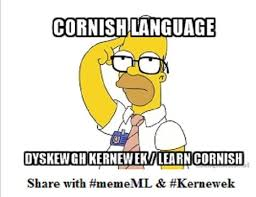 Language Meme - kernewek to star in internet challenge news the cornish times