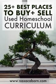 Homeschooling U2013 The Oaxacaborn Blog