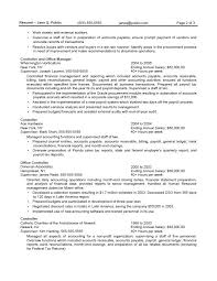 Great Sample Resume by Sample Resume For Government Accountant Templates