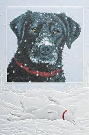 pumpernickel christmas cards pumpernickel press christmas card box sets andy thornal company