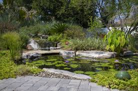nc fish pond contracto builder water garden installer youngsville