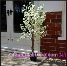 mini best selling cherry tree white cherry blossom tree