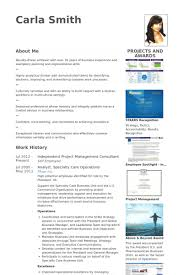 Technical Consultant Resume Sample by Project Management Consultant Resume Samples Visualcv Resume