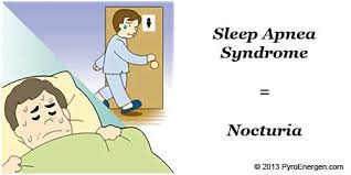 Frequent Bathroom Trips Frequently At Night Nocturia Here U0027s What You Should Do