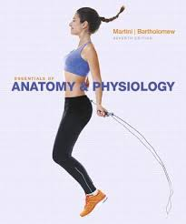 Human Anatomy And Physiology Textbook Online Essentials Of Anatomy And Physiology Book By Martini 20