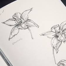how your orchid compact mirror came to life in my sketchbook
