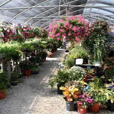 Walled Garden Centurylink by 100 Botanical Garden Plant Sale Plant Sale At The Berkshire