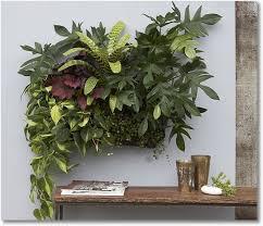Indoor Garden Kit 121 Best Indoor Garden Spaces Images On Pinterest Landscaping