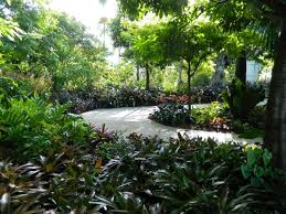 Naples Florida Botanical Garden 19 Best Naples Botanical Garden Images On Pinterest Toronto