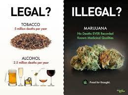 Marijuana Meme - two simple reasons to legalize cannabis the marijuana blog