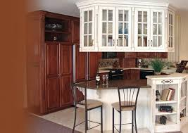 cabinet styles for inspiration graphic kitchen types of door