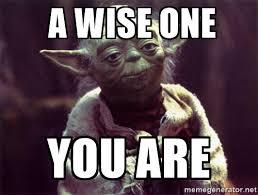 Yoda Meme Generator - yoda meme wise one introvert spring