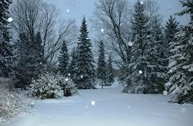 ideas to celebrate winter solstice spiritblogger s