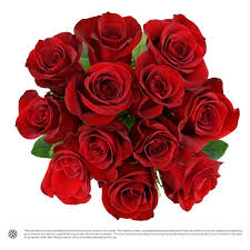 how much does a dozen roses cost premium dozen roses target