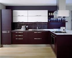 Kitchen Laminate Floor Kitchen Feminine Modern Purple Kitchen Cabinet Overlooking With