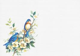 Flower And Bird - flower bird background paper free stock photo domain pictures