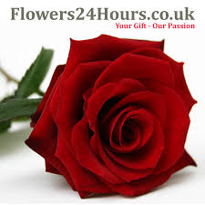 cheap flower delivery flowers24hours s new range of beautifully scented flowers