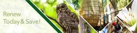 membership renewal special fernbank museum of natural history