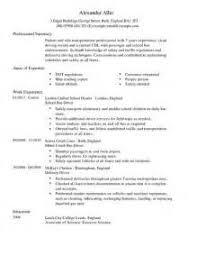 sample resume sap basis administrator college short essay outline