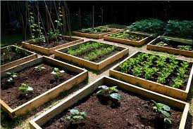 raised vegetable garden plans and layouts outdoor furniture