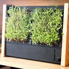 indoors garden micro gardening indoors grow micro greens and indoors in days garden